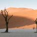 納米比亞 概覽與旅行須知 Namibia