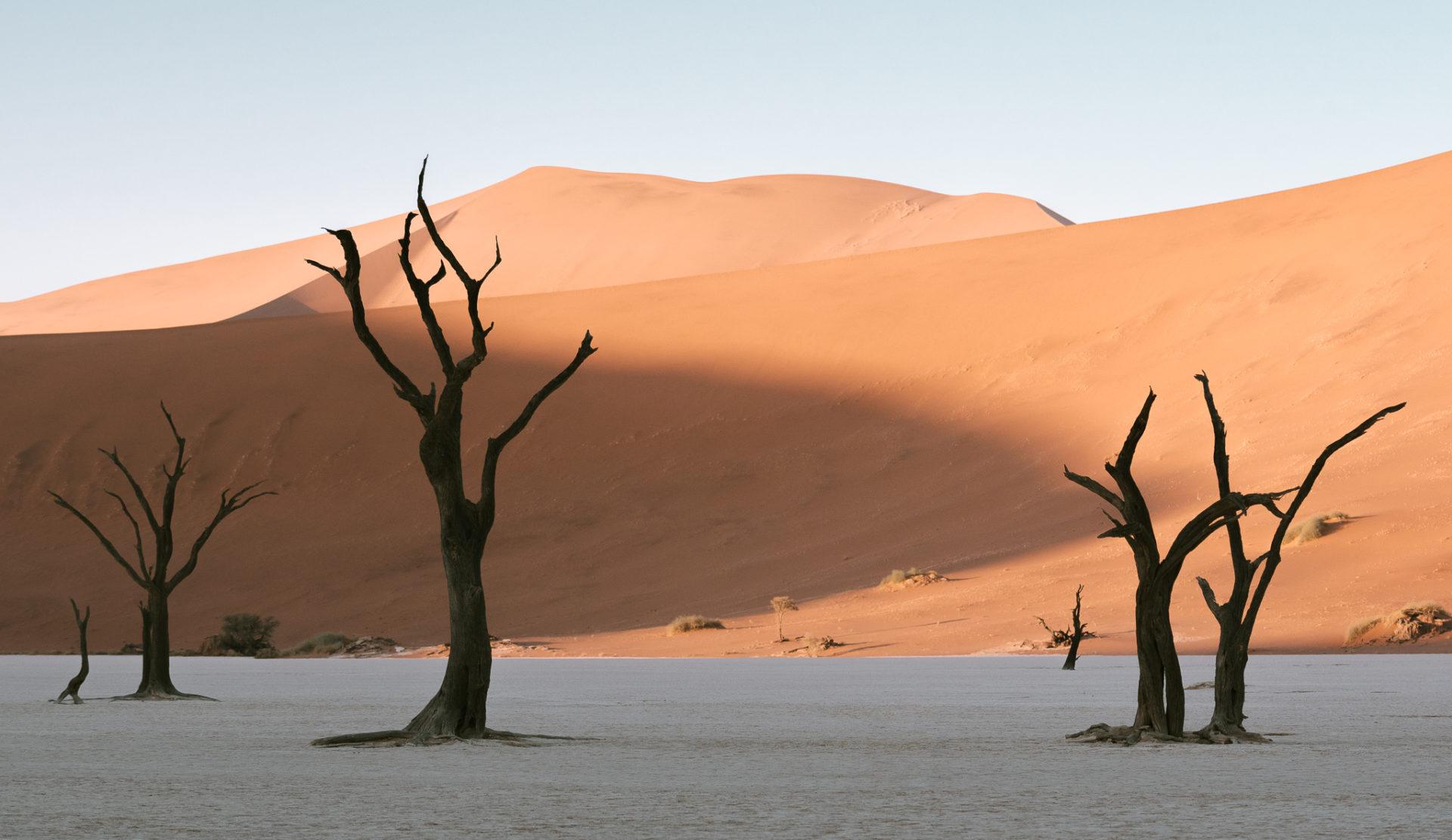 納米比亞旅行攻略 Namibia by 旅行攝影師 張威廉 Wilhelm Chang