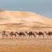 摩洛哥 乘載伊斯蘭與撒哈拉的美麗國度